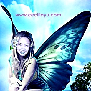butterfly CC