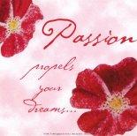 passion propels your dreams....