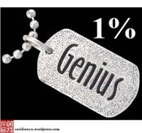 201103021741ts-genius