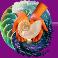 SpiralMuse_logo