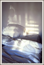 My bed, not Tracey's (c) Ceciliawyu, uk, 2011