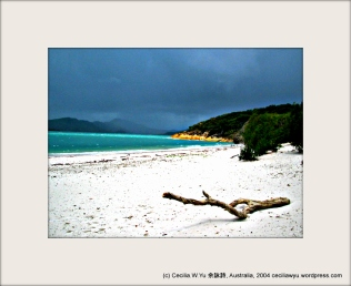 11-Whitsunday0024