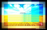 2-golden-wheat-field-620