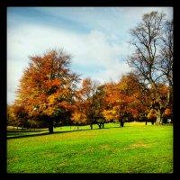 England: Autumn colours!!
