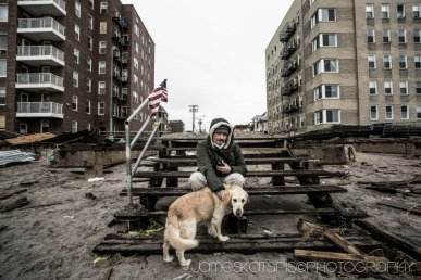 This dog was looking for the boardwalk that it used to walk on . Huricane Sandy