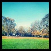 autumn park www.ceciliayu.com