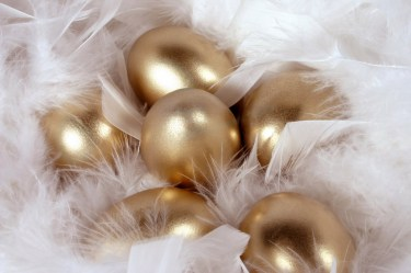 golden-eggs-feathers