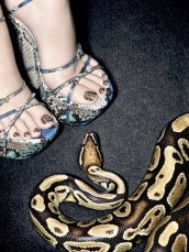 img-python-pedicure_15550129259.jpg_article_singleimage