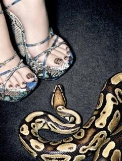 img-python-pedicure_15550129259.jpg_article_singleimage