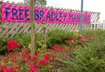 08-free-brad-pink-flowers