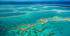 great-barrier-reef (c) australiangeographic (dot)com (dot) au