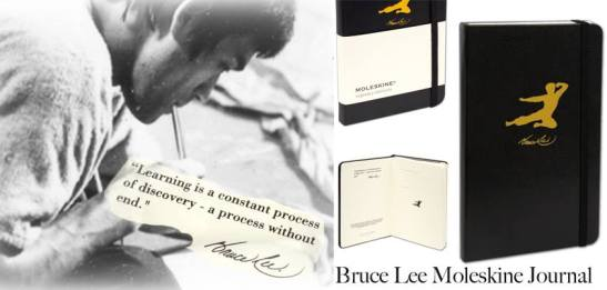 Bruce Lee journals