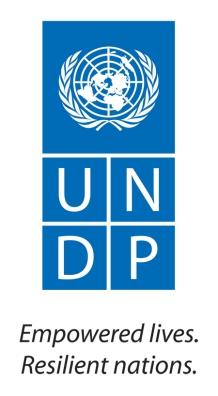 Small UNDP Logo with English Tagline (JPG)