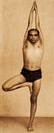 Vrikshasana Iyengar
